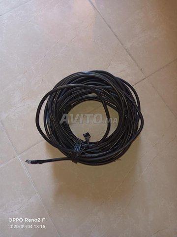 Cable parabole 20m - 1