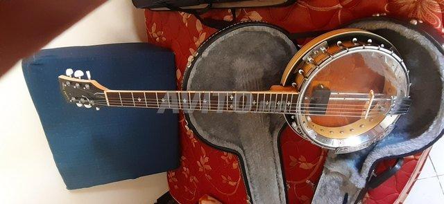 banjo gold tone - 2