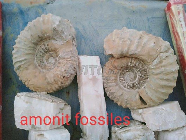 collection minéraux - 1