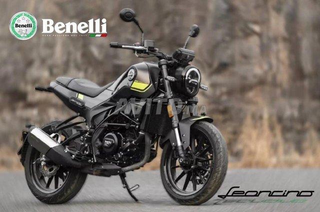 Benelli LEONCINO 250 - Neuf 0km - 1