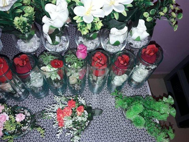 أزهار المنزل - 6