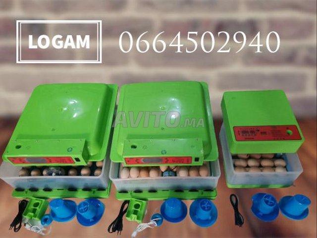 Couveuses professionnel LOGAM Automatique rtk - 2