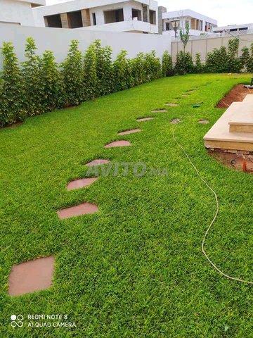 travaux de jardinage exceptionnel. - 1