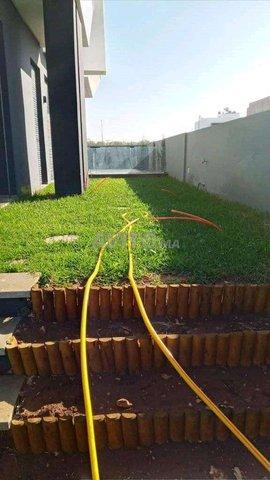travaux de jardinage exceptionnel. - 4