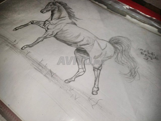 رسم حصان بالقلم الرساس - 1