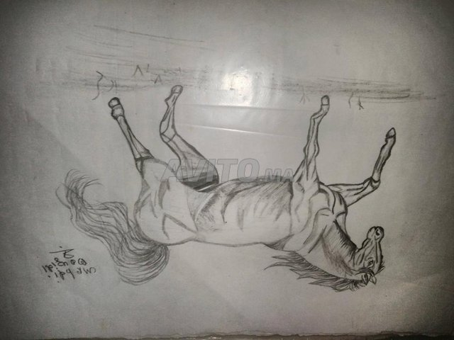 رسم حصان بالقلم الرساس - 2