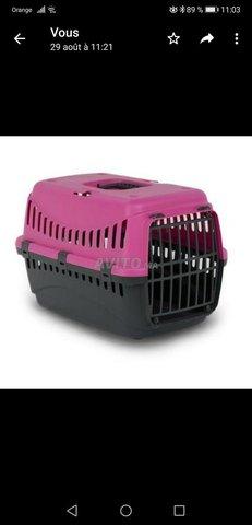 cage de transport pour chat - 2
