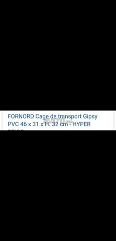 cage de transport pour chat - 4