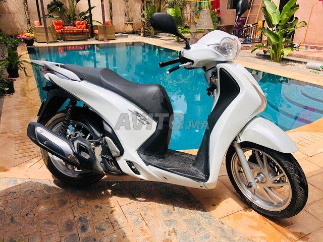 Honda sh 125 blanc nacré très propre  - 1