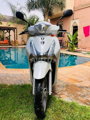 Honda sh 125 blanc nacré très propre  - 2