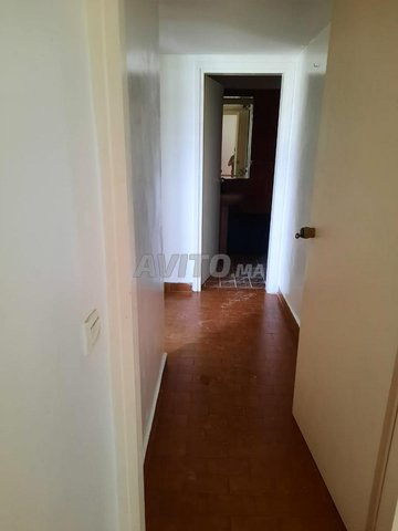 Extra Appartement  - 5