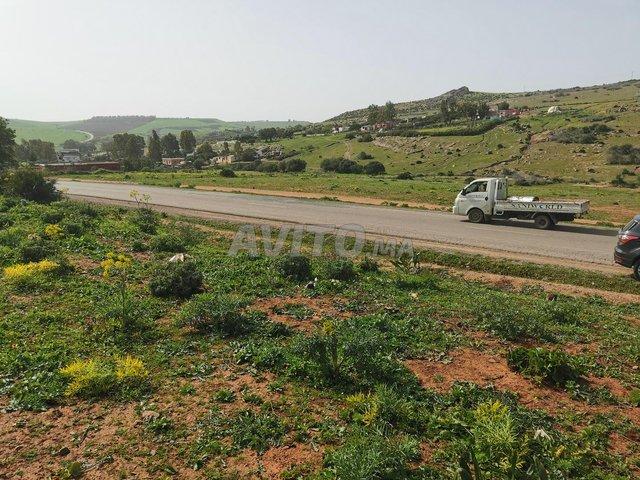 1 ha titré sur la route de Benslimane Casa Fdalat - 1