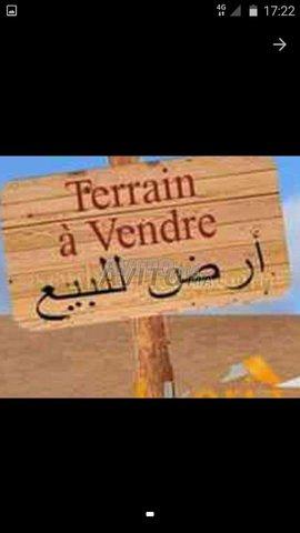 Terrain et ferme en Vente à Bouskoura - 1