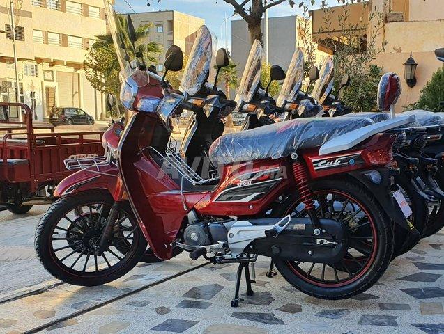 C90 sport 110cc - 3