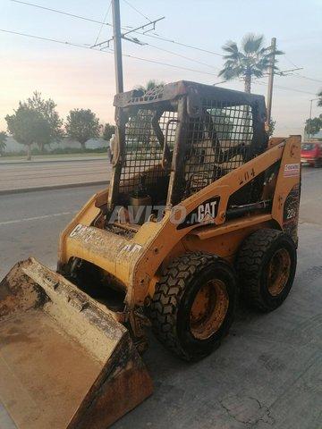 Bobcat cat - 4