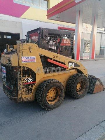 Bobcat cat - 5