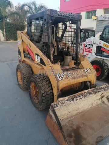 Bobcat cat - 6