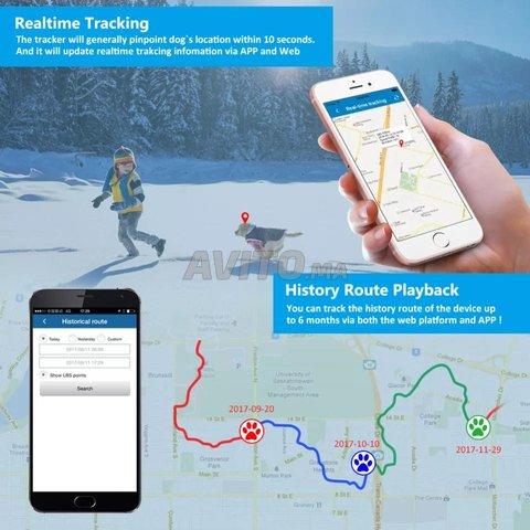 Tk909 GPS suivi en temps réel Anti-Perdu Pet  - 2
