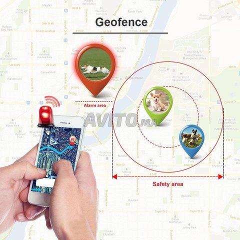 Tk909 GPS suivi en temps réel Anti-Perdu Pet  - 3