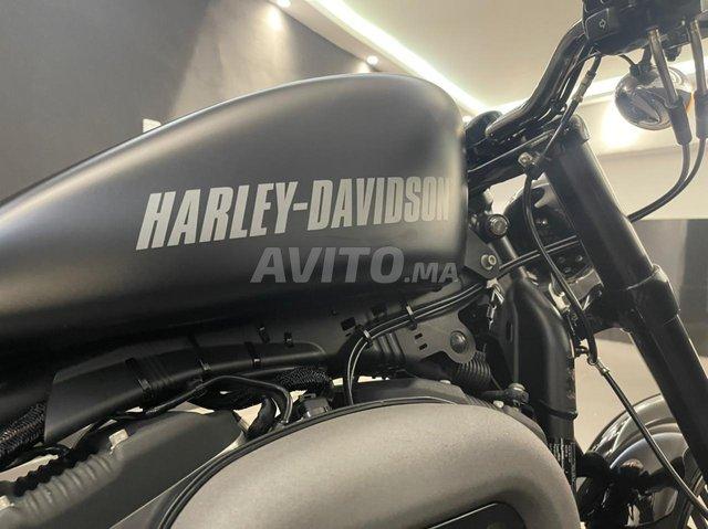 harley davidson  - 3