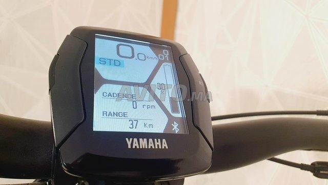 Wheeler yamaha 29 45km/h - 2