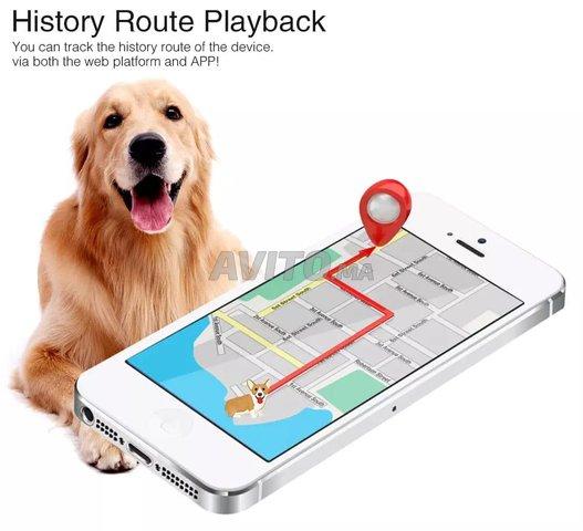 GPS Pour Localisez Vos Animaux en temps réel - 4