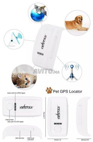 GPS Pour Localisez Vos Animaux en temps réel - 5
