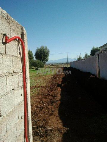 Terrain et ferme en Vente à Ouled Ayad - 2