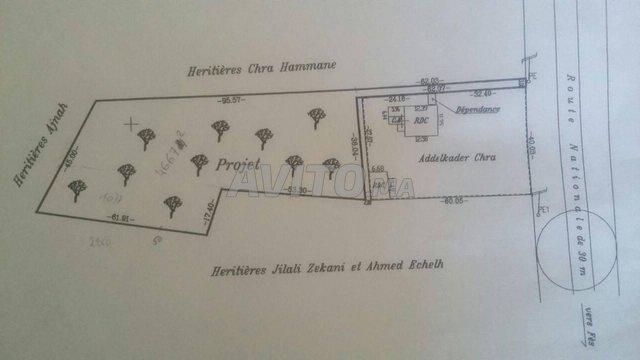Terrain et ferme en Vente à Ouled Ayad - 3