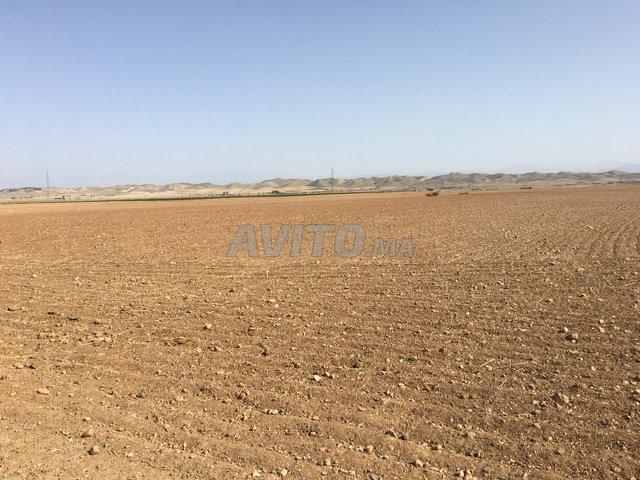 Terrain 72000 m2 à Ait Imour - 1