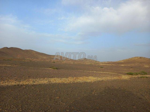Terrain de 15 hectares titré à Marrakech - 4