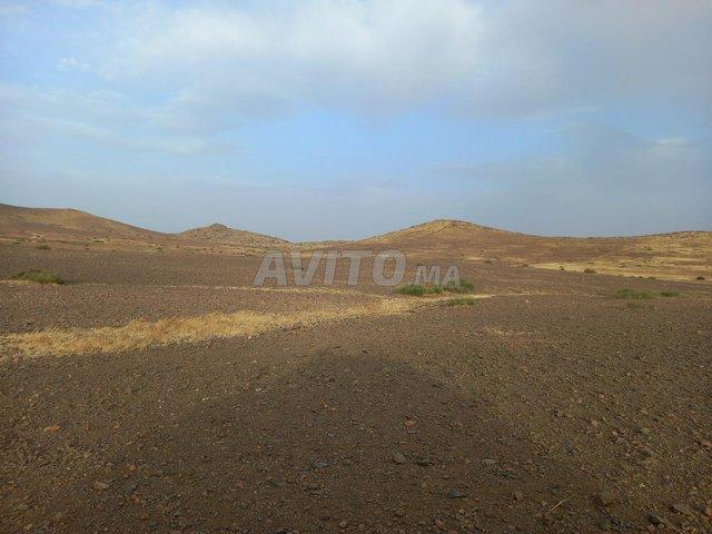 Terrain de 15 hectares titré à Marrakech - 5