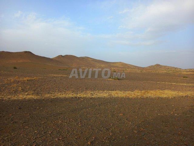 Terrain de 15 hectares titré à Marrakech - 7