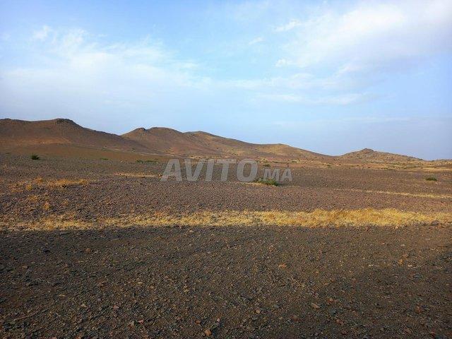 Terrain de 15 hectares titré à Marrakech - 6