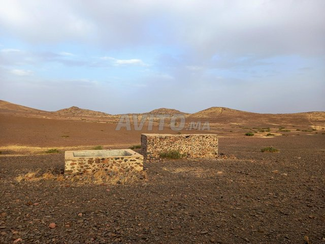 Terrain de 15 hectares titré à Marrakech - 8