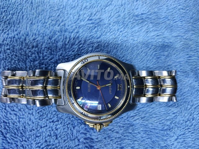 Montre Philip Watch Rater  - 7
