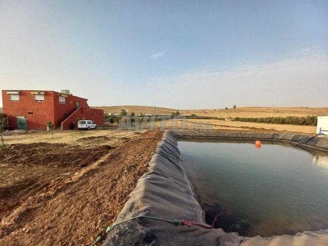 terrain agricole et maison titré - 1