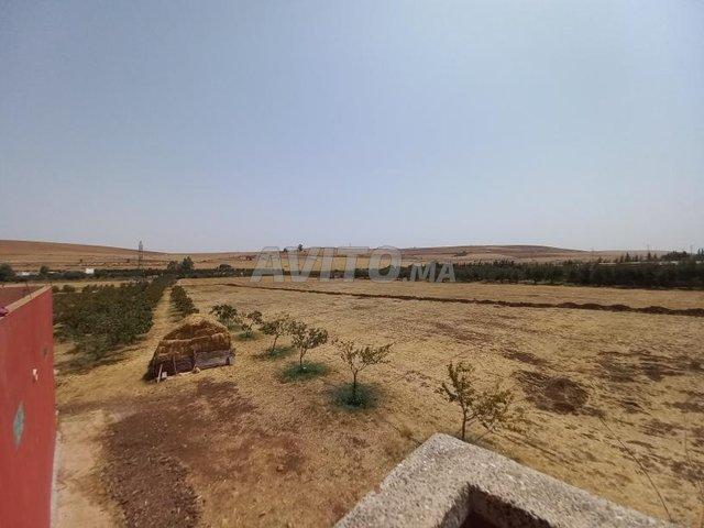 terrain agricole et maison titré - 3