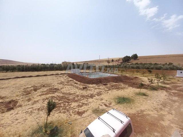 terrain agricole et maison titré - 4