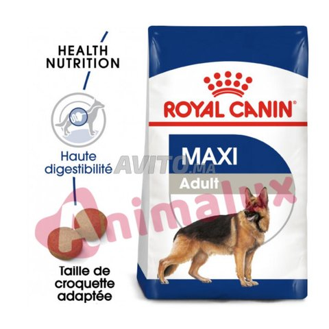 Croquettes Maxi adult 4kg royal canin - 1