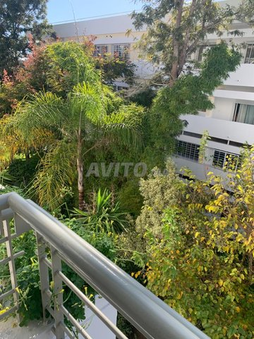bel appartement  à louer près  de l école belge  - 5