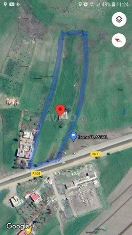 Terrain et ferme en Vente à Taounate - 6