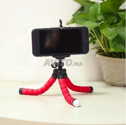 Trépied flexible portatif - 2