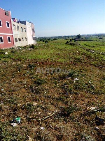 Terrain et ferme en Vente à El Jadida - 1