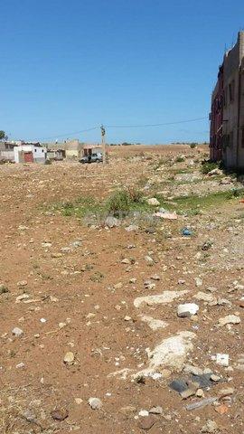 Terrain et ferme en Vente à El Jadida - 3