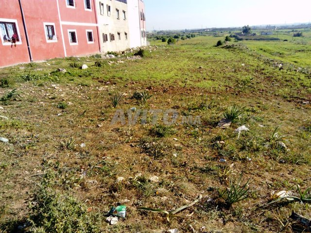 Terrain et ferme en Vente à El Jadida - 5