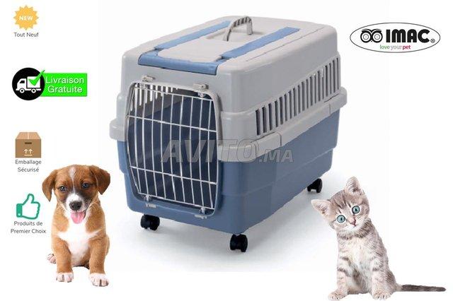 Cages de transport KIM 60 - 1
