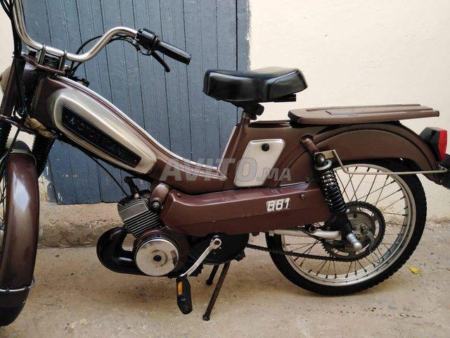 Moto bikan - 2