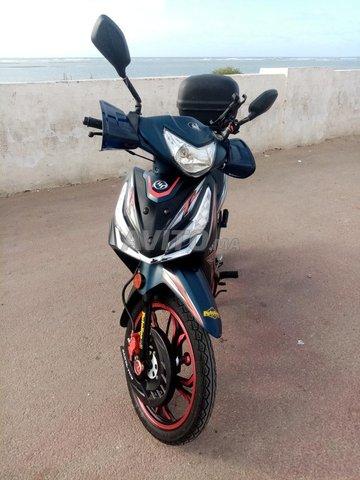 Sanya Fice R50 - 1