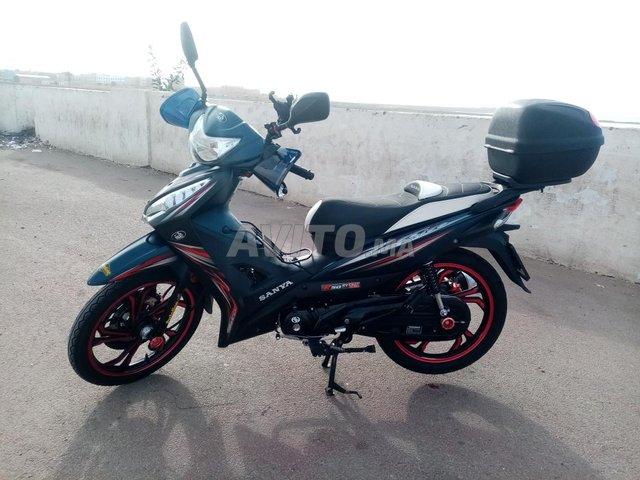 Sanya Fice R50 - 8